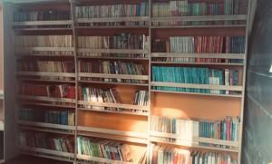 Librellula: biblioteca itinerante creativa @ Vigonza (PD), Parchi e Piazze